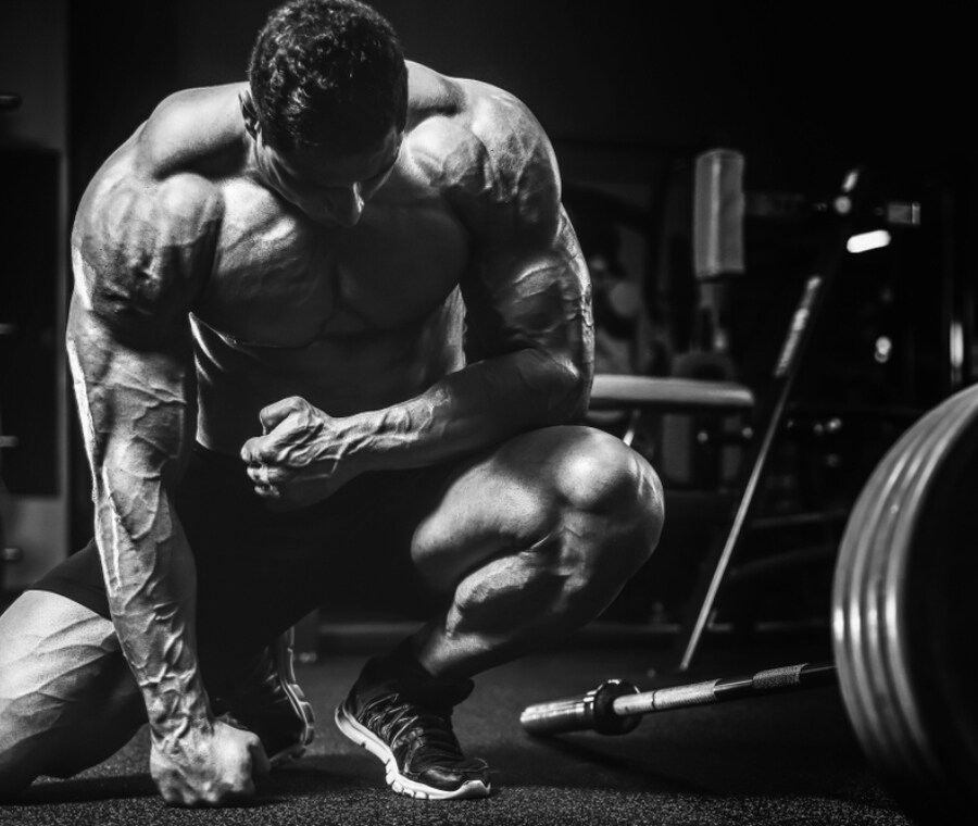 50 Best Tweets Of All Time About schede bodybuilding